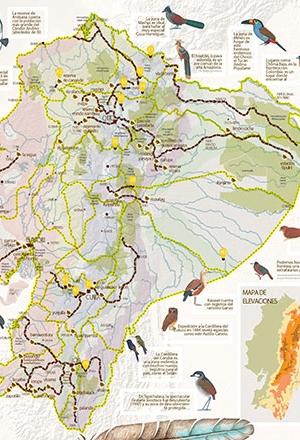 Mapa Ñan Magazine 20: Un festival de aves en Ecuador